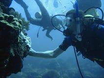 Aventura del buceo con escafandra Fotografía de archivo