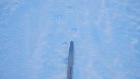 Aventura del esquí del invierno en Lappland metrajes