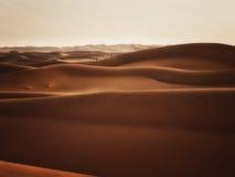 Aventura en Sahara Desert Fotos de archivo libres de regalías