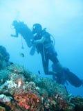 Aventura tropical del buceo con escafandra Fotos de archivo libres de regalías