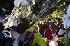 Aventuras do inverno Caminhada na floresta Carpathians ucrânia fotos de stock