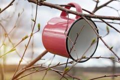 Aventuras no selvagem A caneca do curso pendura no ramo de árvore no dia ensolarado da mola, foto de stock royalty free