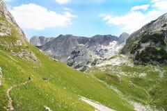 Aventure d'explorateurs de montagne photo libre de droits