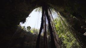 Aventure de caverne de Cenote dans tulum