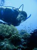 Aventure de plongée à l'air Images stock