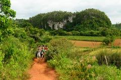 Aventure de touristes au Cuba, Valley de Vinales image stock