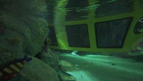 Aventure-se em um submarino em Legoland o vídeo conservado em estoque na metragem dos parques e dos recursos de Dubai video estoque