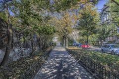 Avenue à Cracovie Images libres de droits