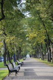 Avenue. In Saint-Petersburg Russia Royalty Free Stock Photo