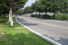 Avenue Stock Photo
