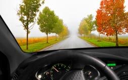 Avenue in autumn Stock Image