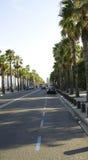 Avenue in Barceloneta Stock Image
