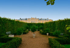 Avenue of bushes  in palace formal garden Royalty Free Stock Photography