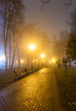 The avenue of city park at night Royalty Free Stock Image