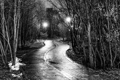 The avenue of city park at night Stock Photography