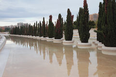 Avenue of cypresses, `City of art and science`. Valencia, Spain royalty free stock photo