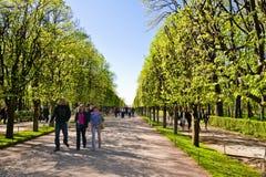 Avenue dans Peterhof, St Petersburg, Russie Image stock