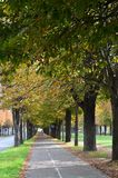 Avenue de Paris images libres de droits