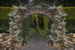 Avenue. With a decorative passage of bricks and two young firs Royalty Free Stock Images