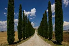 Avenue des arbres de cyprès en Toscane Images stock