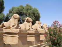 Avenue des sphinx à tête de RAM dans le temple de Karnak photos stock