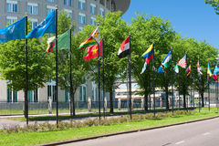 Avenue of flags in Hague Royalty Free Stock Image