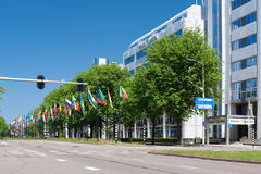 Avenue of flags in Hague, Netherlands Royalty Free Stock Photography