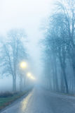 Avenue in fog Stock Image
