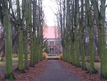 Avenue of old trees leading to the church stock photography