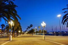 Avenue with palm trees in Barcelona Royalty Free Stock Image