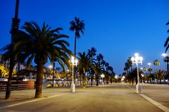 Avenue with palm trees in Barcelona Royalty Free Stock Photography