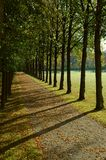 Avenue in a park in autumn Royalty Free Stock Image