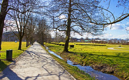 Avenue in a Park Stock Image
