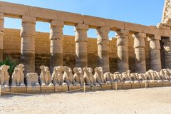 Avenue of the ram-headed Sphinxes in a Karnak Temple. Luxor, Egypt. Avenue of the ram-headed Sphinxes in Karnak Temple. Luxor, Egypt royalty free stock image