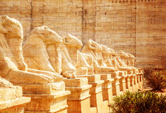 Avenue of the ram-headed Sphinxes Stock Images