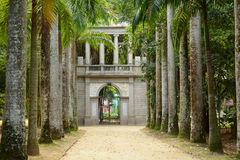 Avenue of Royal Palm Trees. Botanical Garden. Royalty Free Stock Photography