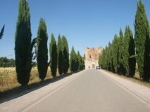 Avenue for San Galgano abbey Stock Photos