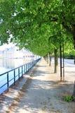 Avenue silencieuse à Fontainebleau Photographie stock libre de droits