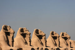 Avenue of Sphinxes Royalty Free Stock Images