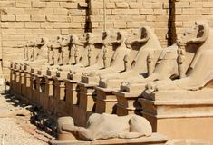 The Avenue of The Sphinxes. Royalty Free Stock Photography