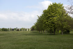 Avenue of trees on Durdham Down, Bristol Stock Images