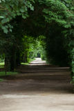 An avenue of trees in the grounds of the chateau of Chenonceau Stock Photos