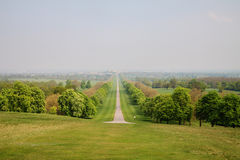 Avenue of Trees on the Long Walk at Windsor Stock Photo