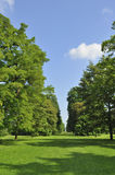 Avenue of trees. Magnificent vista through avenue of trees, Kew Gardens, London Stock Photo