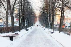 Avenue vide avec des bancs et des arbres dans la neige Photo libre de droits