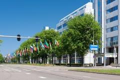 Aveny av flaggor i Hague, Nederländerna Royaltyfri Fotografi