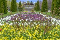 Avenyträdgårdar på Regent's Park i London Royaltyfri Fotografi
