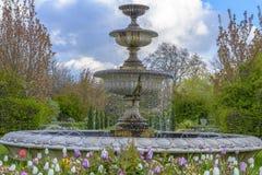 Avenyträdgårdar på Regent's Park i London Royaltyfria Bilder