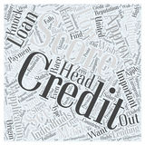 Average credit score us word cloud concept vector background. Text Stock Photography