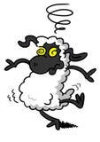 Avere giramenti di testa delle pecore bianche Fotografia Stock